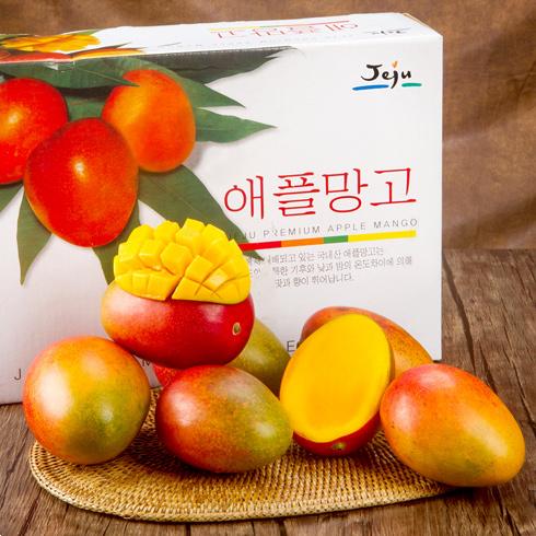 서귀포농협 애플망고 3kg